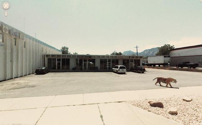 Photo credit: Google Street View, screengrabbed by Jon Rafman